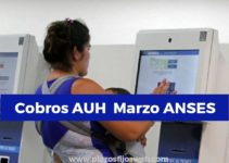 anses auh marzo 2020