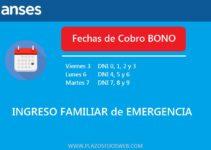 Fechas de Cobro Bono IFE