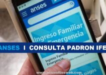 Consultar Padron IFE