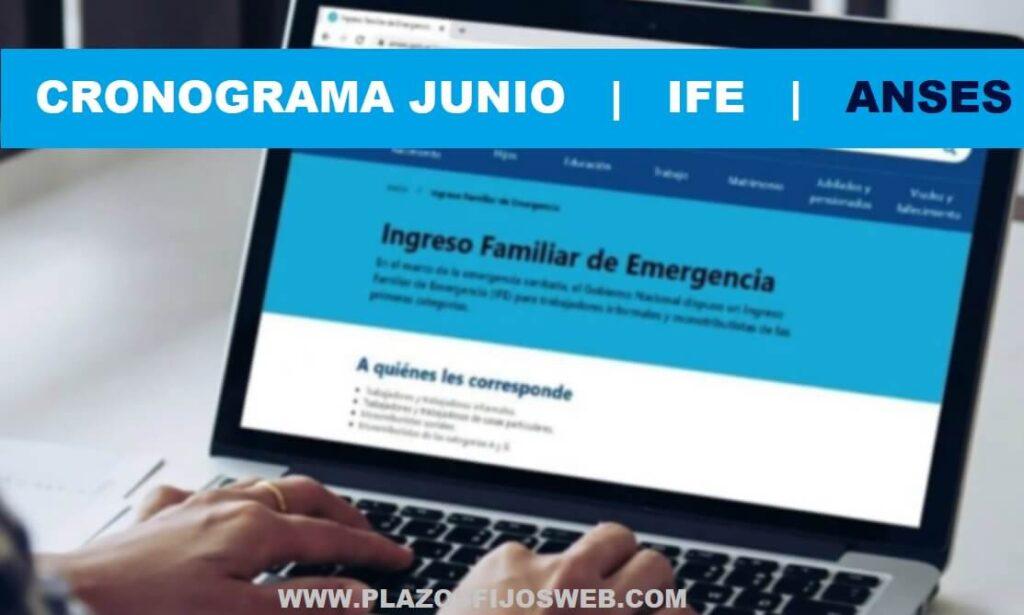 cronograma junio ife anses