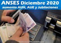 ANSES AUMENTO JUBILACIONES AUH DICIEMBRE