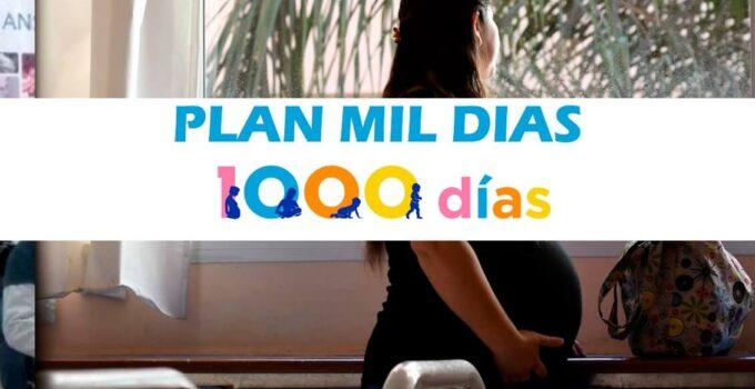 Plan de los 1000 dias, quienes lo reciben