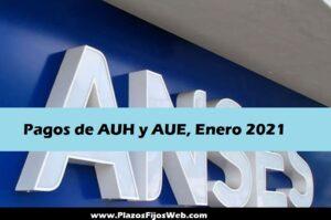 Comienzan los pagos de AUH y AUE en Enero 2021